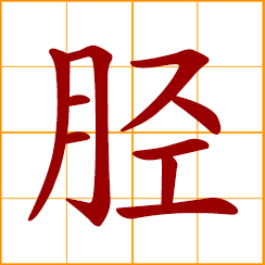 simplified Chinese symbol: shin; lower part of leg