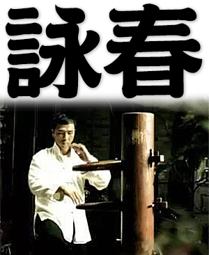 Wing Chun, Chinese martial art