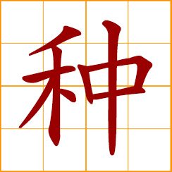 simplified Chinese symbol: to plant, grow, cultivate; seeds of plant; kind, sort, type; race, breed, species