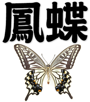 papilio, swallow-tail, swallowtail butterfly